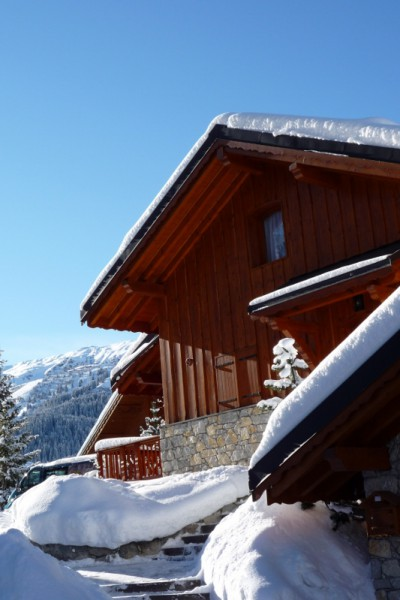 Chalet Serpolet Meribel