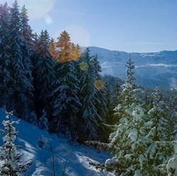 Chalet Loden Meribel View