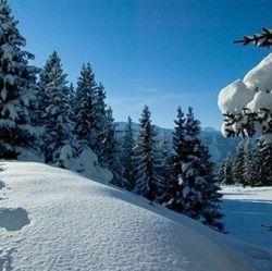 Chalet Loden Meribel Ski Holidays