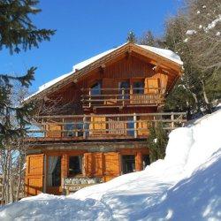 Ski in ski out Chalet La Fugue in Meribel