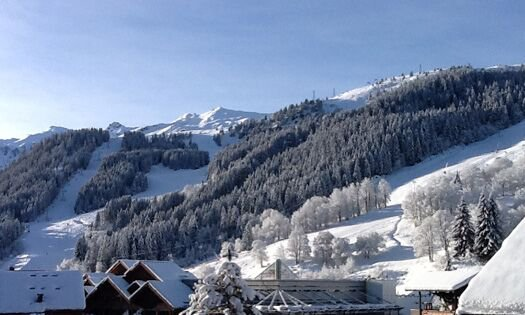 The beautiful mountain view from Chalet Montee in Meribel