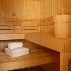 Chalet Delmontel Sauna