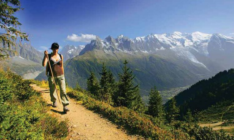 lady walker in the summer alps