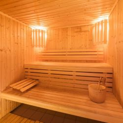 Indiana Lodge Sauna