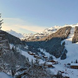 Chalet Sorbier View